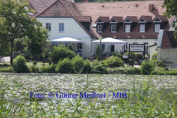 landhaushotelprinzalbrecht_579